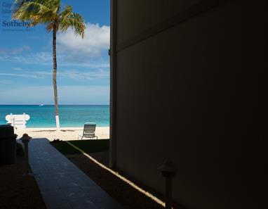Lone Palm viewed through breeze way at The Cayman Club